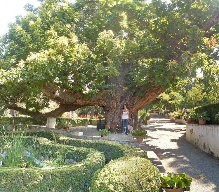 jardin-muller-1.jpg