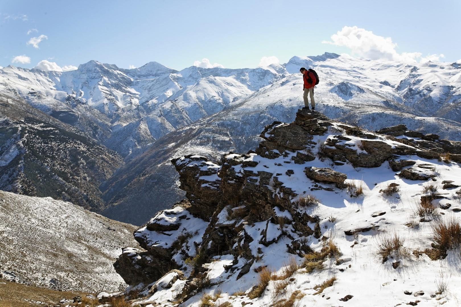 sierra-nevada-groot.jpg